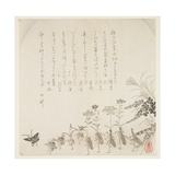 Autumn Flowers and Singing Insects, C.1854-59 Giclee Print by Ko Sukoku II