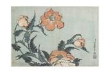 Poppies, C. 1832 Giclee Print by Katsushika Hokusai