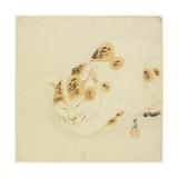 Sleeping Cat Giclee Print by Kawanabe Kyosai