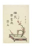 Plum Flower Arrangement Giclee Print by Kitagawa Utamaro