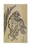 Dharma, Mid 18th-Mid 19th Century Giclée-Druck von Katsushika Hokusai