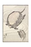Sayama-Ga-Ike Pond in Musashi Province, 1817 Giclee Print by Katsushika Hokusai