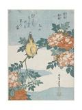 Black-Naped Oriole and China Rose, C. 1833 Giclée-Druck von Katsushika Hokusai