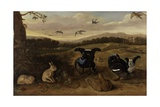 Black Game, Rabbits and Swallows in a Park, C.1700 Giclee Print by Leonard Knyff