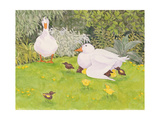 Ducks and Ducklings Giclee Print by Linda Benton