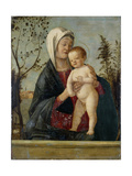 Madonna and Child, C.1510 Giclee Print by Marco Basaiti