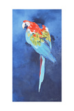 Red and Blue Macaw, 2002 Giclee Print by Odile Kidd