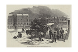 The Christmas Holly Cart Giclee Print by Myles Birket Foster