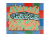 Snake-Head, 1996 Giclee Print by Peter Wilson