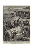 Our Fishing Industries, Crab-Catching in Cornwall Giclee Print by Percy Robert Craft