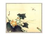 Kabocha Ni Tonbou Giclee Print by Ogata Gekko