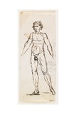 Standing Nude Male Giclee Print by Pelagio Palagi