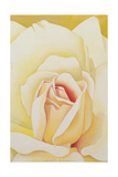 The Rose, 2002 Giclee Print by Myung-Bo Sim