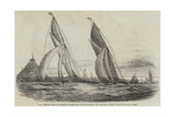 Royal Western Yacht Club Regatta, in Mount's Bay, The Grand Turk, and The Lily of Devon Giclee Print by Nicholas Matthews Condy