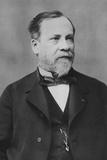 Portrait of Louis Pasteur Photographic Print by Pierre Petit