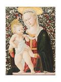 Madonna of the Roses, C.1485-90 Giclee Print by Pseudo Pier Francesco Fiorentino