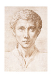 Head of a Young Man Looking Up Gicleetryck av Parmigianino,