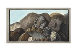 Lava Giclee Print by Pietro Fabris