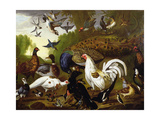 The Fable of the Raven with a Peacock, Cockerel, Woodpecker, Jay, Woodcock, and Magpie Giclee Print by Pieter Casteels