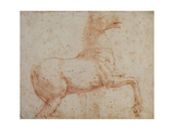 Study of One of the Quirinal Marble Horses, C.1515-17 Impression giclée par  Raphael