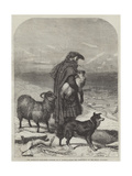 The Highland Shepherd Gicléedruk van Richard Ansdell
