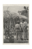 The Insurrection in Colombia Giclee Print by Richard Caton Woodville II