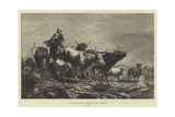 Cattle-Lifters Crossing the Border Giclee Print by Richard Beavis