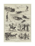 Coursing-Matches Giclee Print by S.t. Dadd