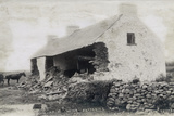 The Cleary House after Battering Ram, Eviction at the Vandeleur Estate, County Clare, Ireland, 1888 Giclee Print by Robert French