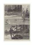 Sport in Alaska, with Salmon and Bear Gicléedruk van Richard Caton Woodville II