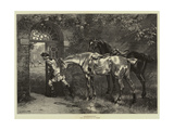 Suspense Giclee Print by Samuel Edmund Waller