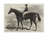 Pretender, Winner of the Derby Giclee Print by Samuel John Carter