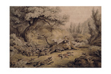 Wild Dogs Attacking a Tiger Giclee Print by Samuel Howitt