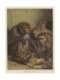 A Darwinian Question Giclée-tryk af Samuel John Carter