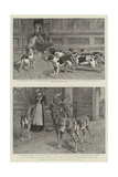 You are Requested to Keep the Hall Doors Shut on Account of the Animals in the Park Giclee Print by Samuel Edmund Waller