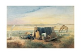 Invalid's Tent, Salt Lake 75 Miles North-West of Mount Arden, 1846 Giclee Print by Samuel Thomas Gill