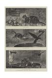 A Catastrophe, the New Tale of a Tub Reproduction procédé giclée par S.t. Dadd