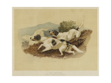 The Setters Giclee Print by Edwin Landseer