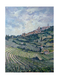 Vineyards, Tuscany Giclee Print by Rosemary Lowndes