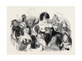 The Dog Bill Committee Giclee Print by Edwin Landseer