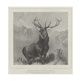The Monarch of the Glen Giclee Print by Edwin Landseer