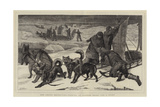 The Arctic Expedition, Packing Up Sledges Ready for a Start Giclee Print by Samuel Edmund Waller