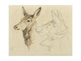 Fac-Simile of a Drawing by Sir E Landseer, Ra Giclee Print by Edwin Landseer