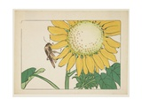 Grasshopper and Sunflower, C. 1877 Giclee Print by Shibata Zeshin