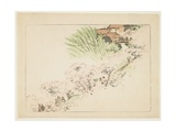 Mountain Cherry Blossoms, C. 1877 Giclee Print by Shibata Zeshin