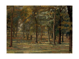 Richmond Park, 1914 Giclee Print by Spencer Frederick Gore