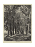 The Avenue Giclee Print by Thomas Creswick