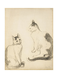 The Two Cats; Les Deux Chats Giclee Print by Theophile Alexandre Steinlen