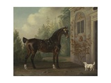 Lord Abergavenny's Dark Bay Carriage Horse with a Terrier, 1785 Giclee Print by Thomas Gooch
