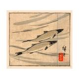 Ayu Zu, River Trout (Ayu). [Between 1868 and 1894], 1 Print : Woodcut, Color ; 9.6 X 10.8 Giclee Print by Utagawa Hiroshige